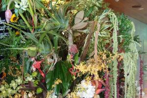 フードコート オープン祝い花